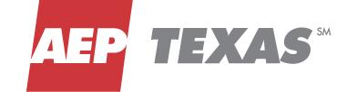 AEP-Texas(Gold)